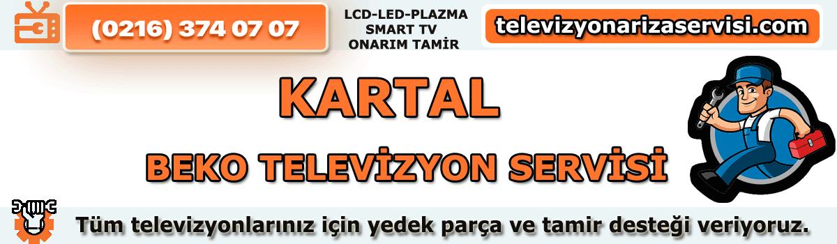 Kartal Beko Televizyon Servisi