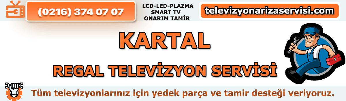 Kartal Regal Televizyon Servisi