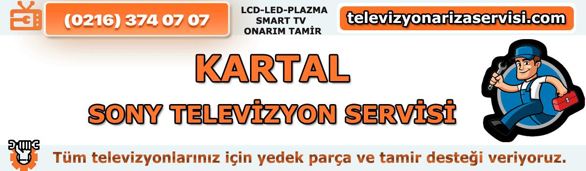 Kartal Sony Televizyon Servisi