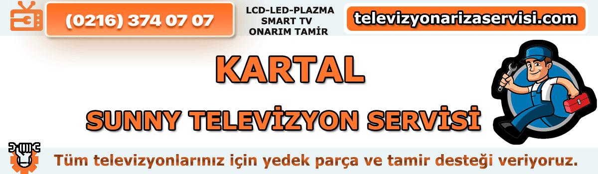Kartal Sunny Televizyon Servisi