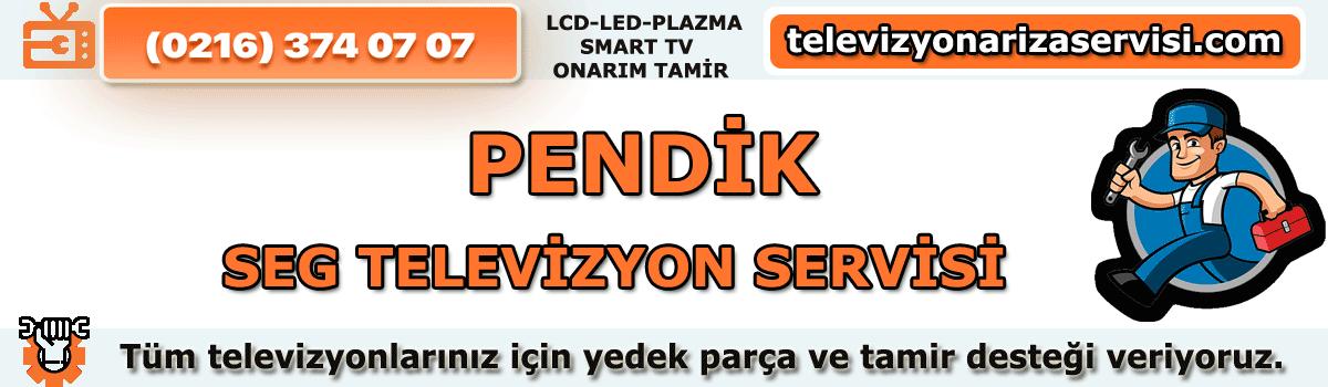 Pendik Seg Televizyon Servisi