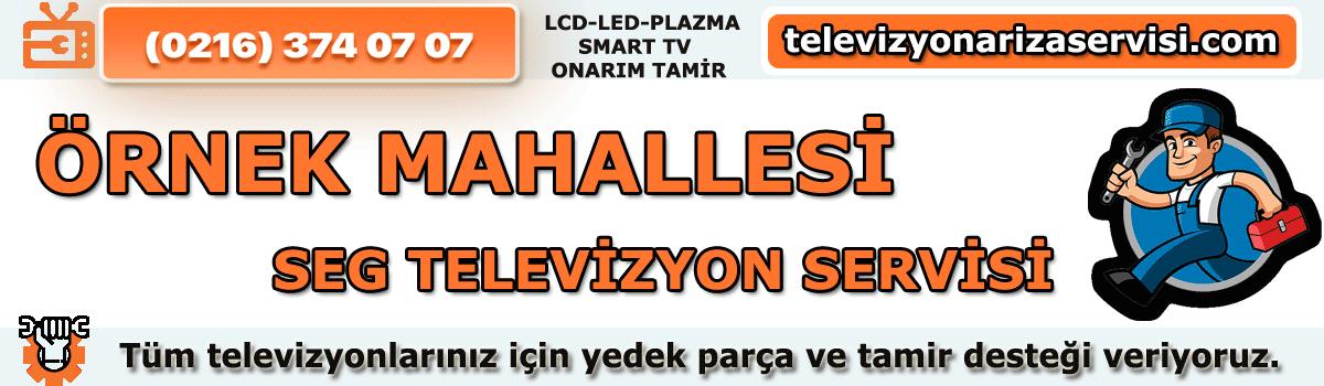 Örnek Mahallesi Seg Tv Tamircisi Tv Servisi Tv Tamiri 0216 374 07 07