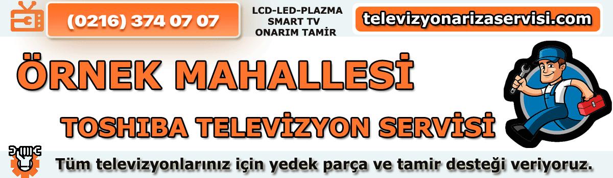 Örnek Mahallesi Toshiba Televizyon Tamircisi Tv Servisi 0216 374 07 07