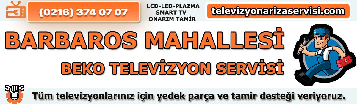 Barbaros Mahallesi Beko Televizyon Tamircisi Özel Tv Servisi