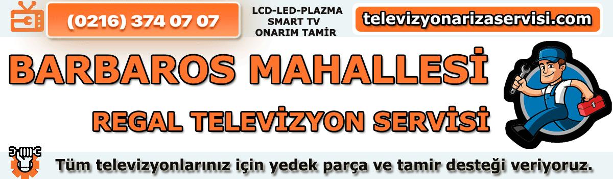 Barbaros Mahallesi Regal Televizyon Tamircisi Özel Tv Servisi