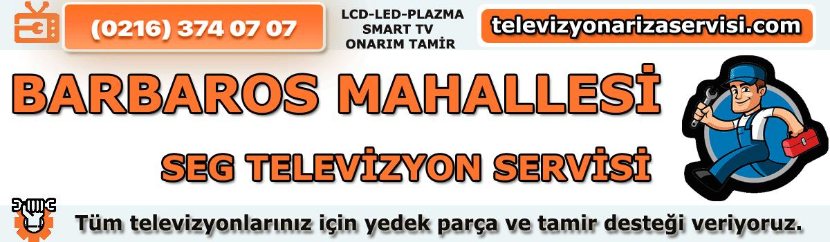 Barbaros Mahallesi Seg Tv Tamircisi Özel Tv Servisi  0216 374 07 07