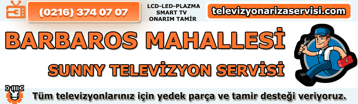 Barbaros Mahallesi Sunny Televizyon Tamircisi Özel Tv Servisi