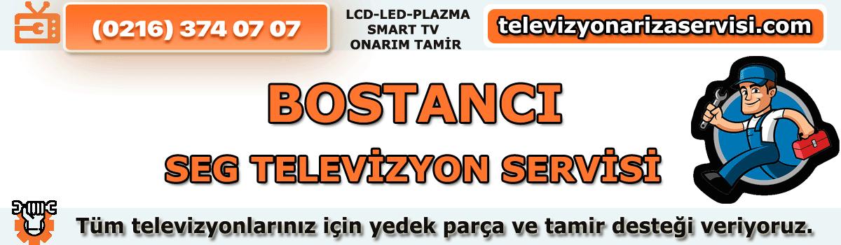 Bostancı Seg Televizyon Tamircisi Özel Tv Servisi 0216 374 07 07