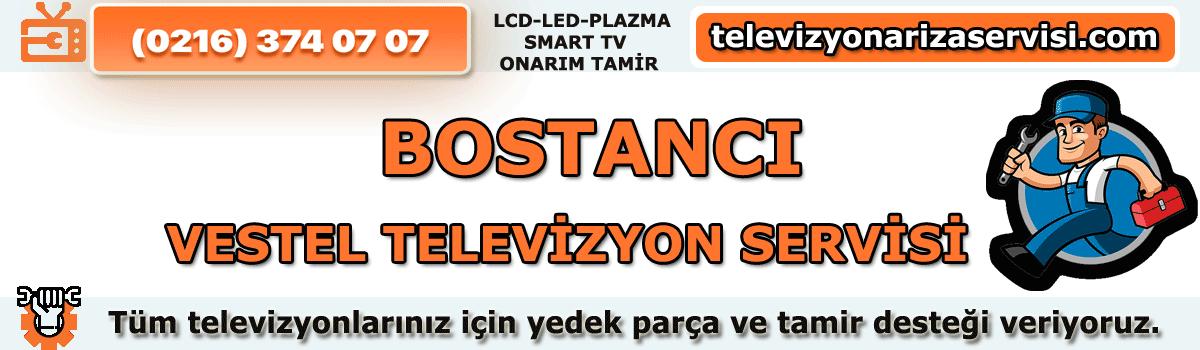 Bostancı Vestel Tv Tamircisi Özel Tv Servisi Tv Tamiri 0216 374 07 07