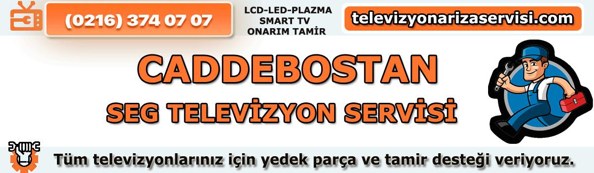 Caddebostan Seg Televizyon Tamircisi Özel Tv Servisi 0216 374 07 07