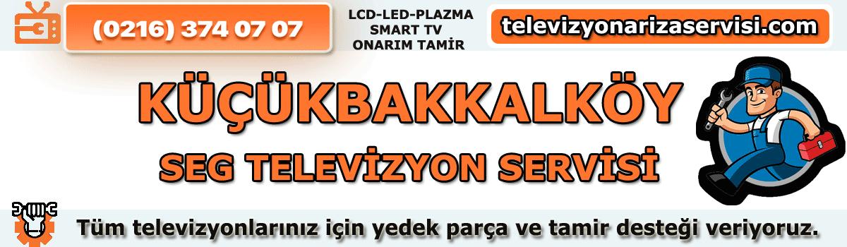 Küçükbakkalköy Seg Televizyon Tamircisi Tv Servisi 0216 374 07 07