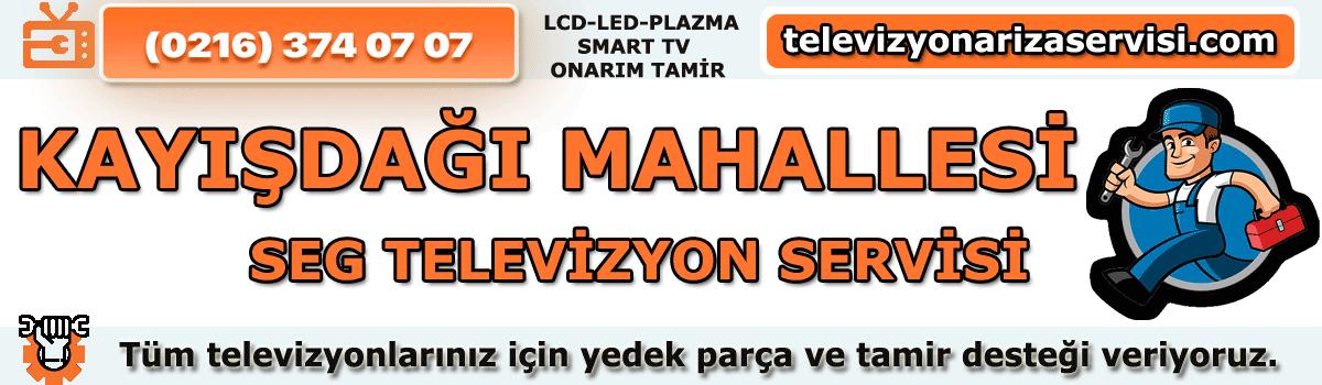 Kayışdağı Mahallesi Seg Tv Tamircisi Özel Tv Servisi 0216 374 07 07