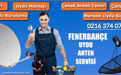 Fenerbahçe Uydu Anten Servisi