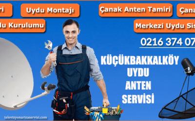 Küçükbakkalköy Uydu Anten Servisi